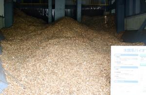木質系バイオマス化発電設備 ウッドチップ
